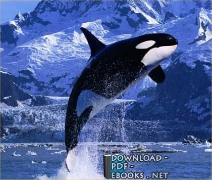 كتاب شياطين ال 13 جزيرة الحيتان