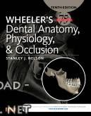 كتاب Wheeler's Dental Anatomy, Physiology and Occlusion