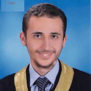 كتب أنيس حكمت أبو حميد