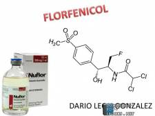 قراءة و تحميل كتاب  Florfenicol PDF
